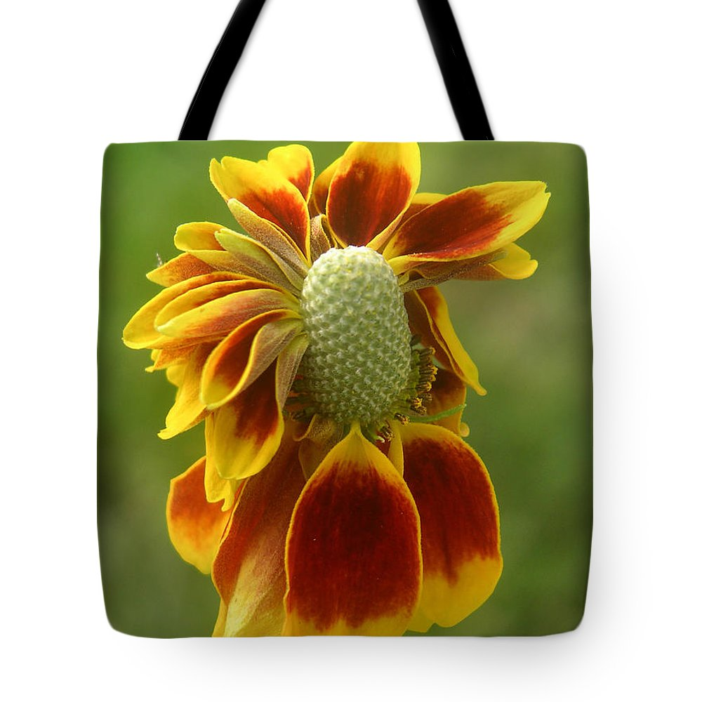 Nature Tote Bag featuring the photograph Mexican Hat Dance by Lucyna A M Green