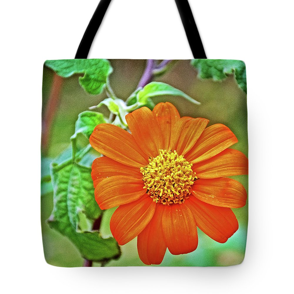 Mexican Sunflower Along White Pine Trail Near Rockford Tote Bag featuring the photograph Mexican Sunflower Along White Pine Trail In Kent County, Michigan by Ruth Hager