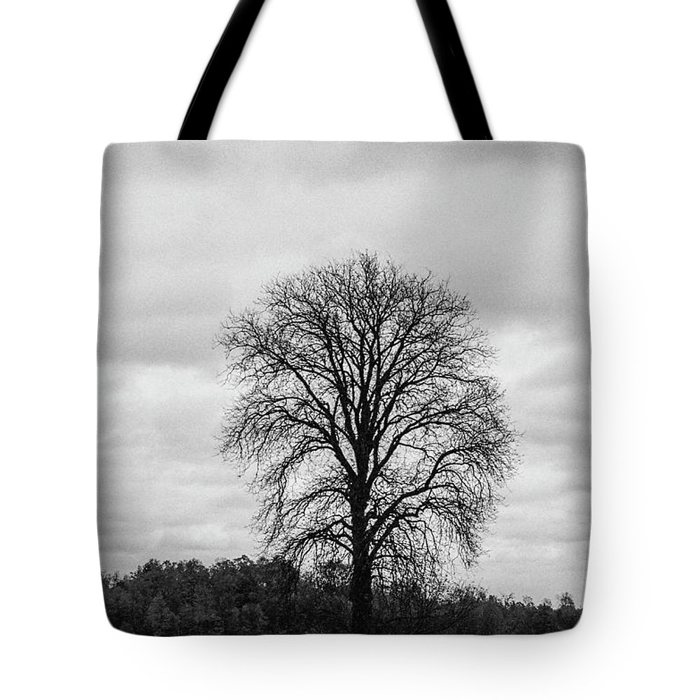 35mm Film Tote Bag featuring the photograph Michigan Lonley Tree by John McGraw