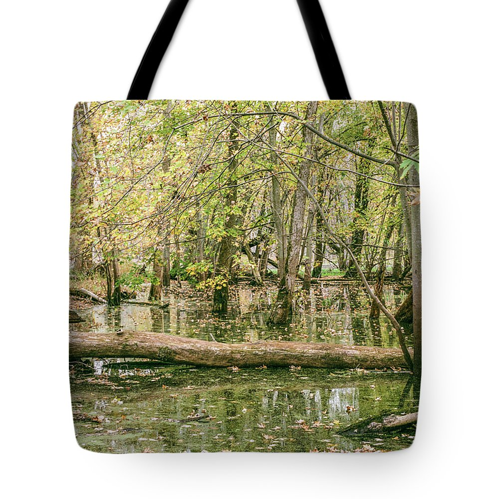 35mm Film Tote Bag featuring the photograph Michigan Swamp by John McGraw