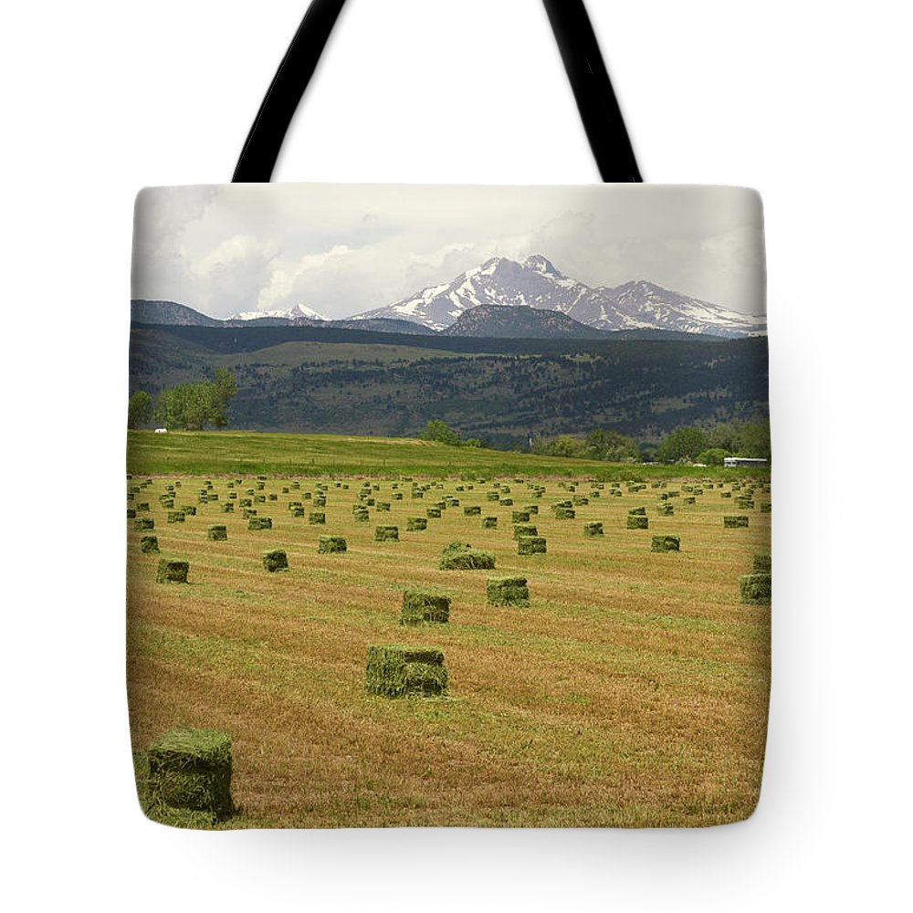 Country Tote Bag featuring the photograph Mid June Colorado Hay And The Twin Peaks Longs And Meeker by James BO Insogna