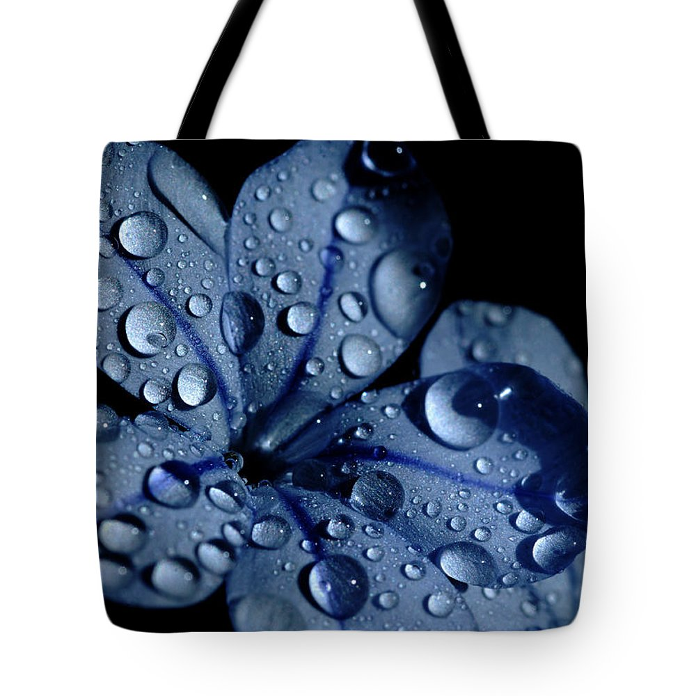 Blue Tote Bag featuring the photograph Midnight Dew by Donna Blackhall