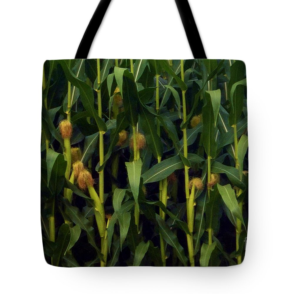 Illinois Tote Bag featuring the photograph Midwest Silk by Laura Birr Brown