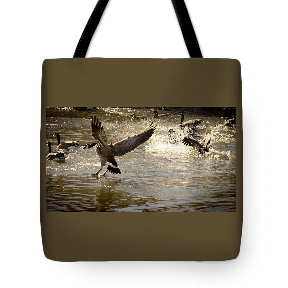 Lwater Tote Bag featuring the photograph Minden 4 by Catherine Sobredo