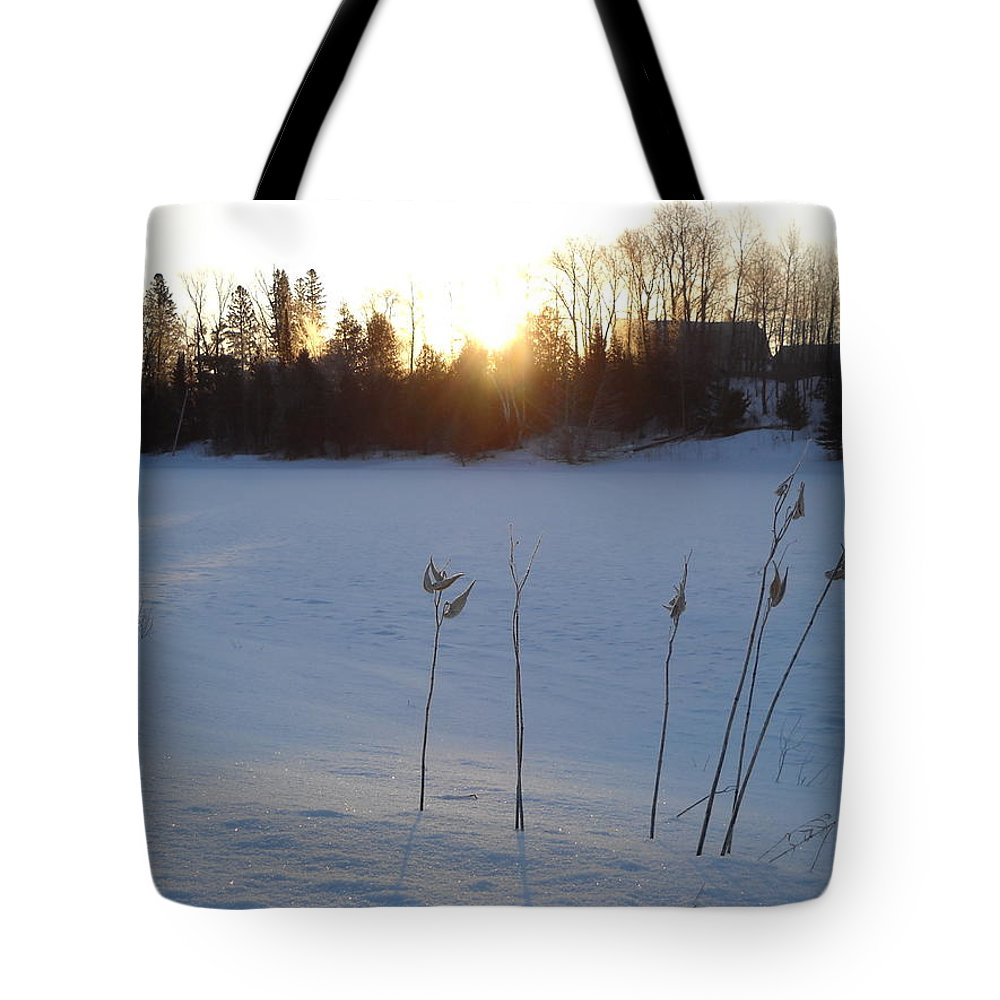Milkweed Tote Bag featuring the photograph Milkweed In February At Sunrise by Kent Lorentzen