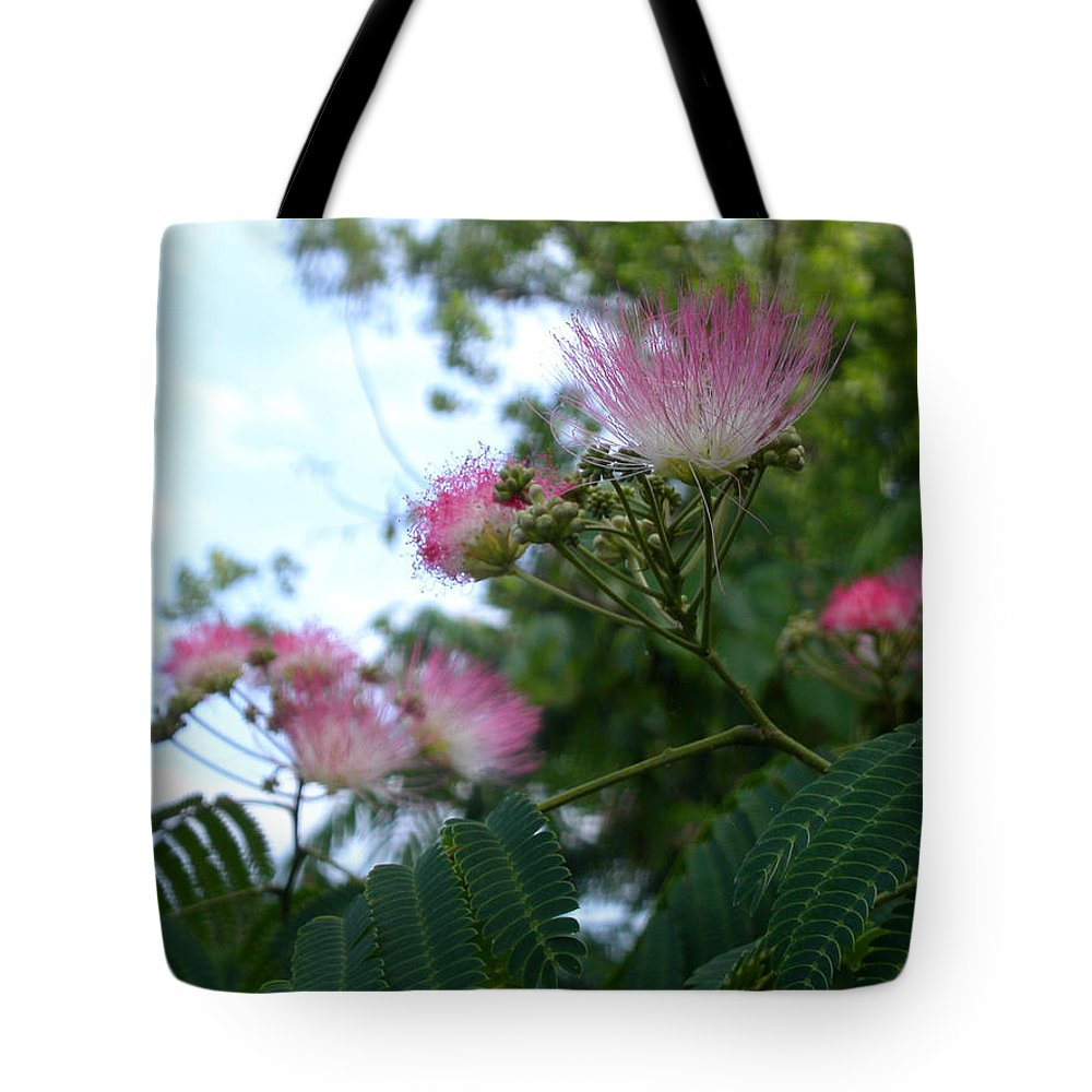 Mimosa Tote Bag featuring the photograph Mimosa Sky by Anne Cameron Cutri