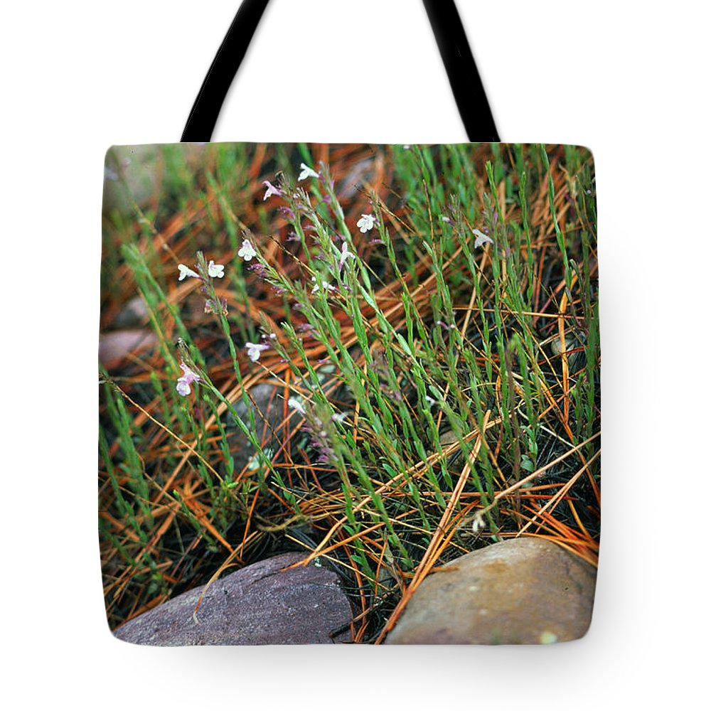 Forest Floor Tote Bag featuring the photograph Miniature Bells by Randy Oberg