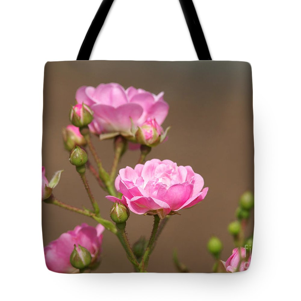 Miniature Roses Tote Bag featuring the photograph Miniature Pink Roses by Sharon Talson