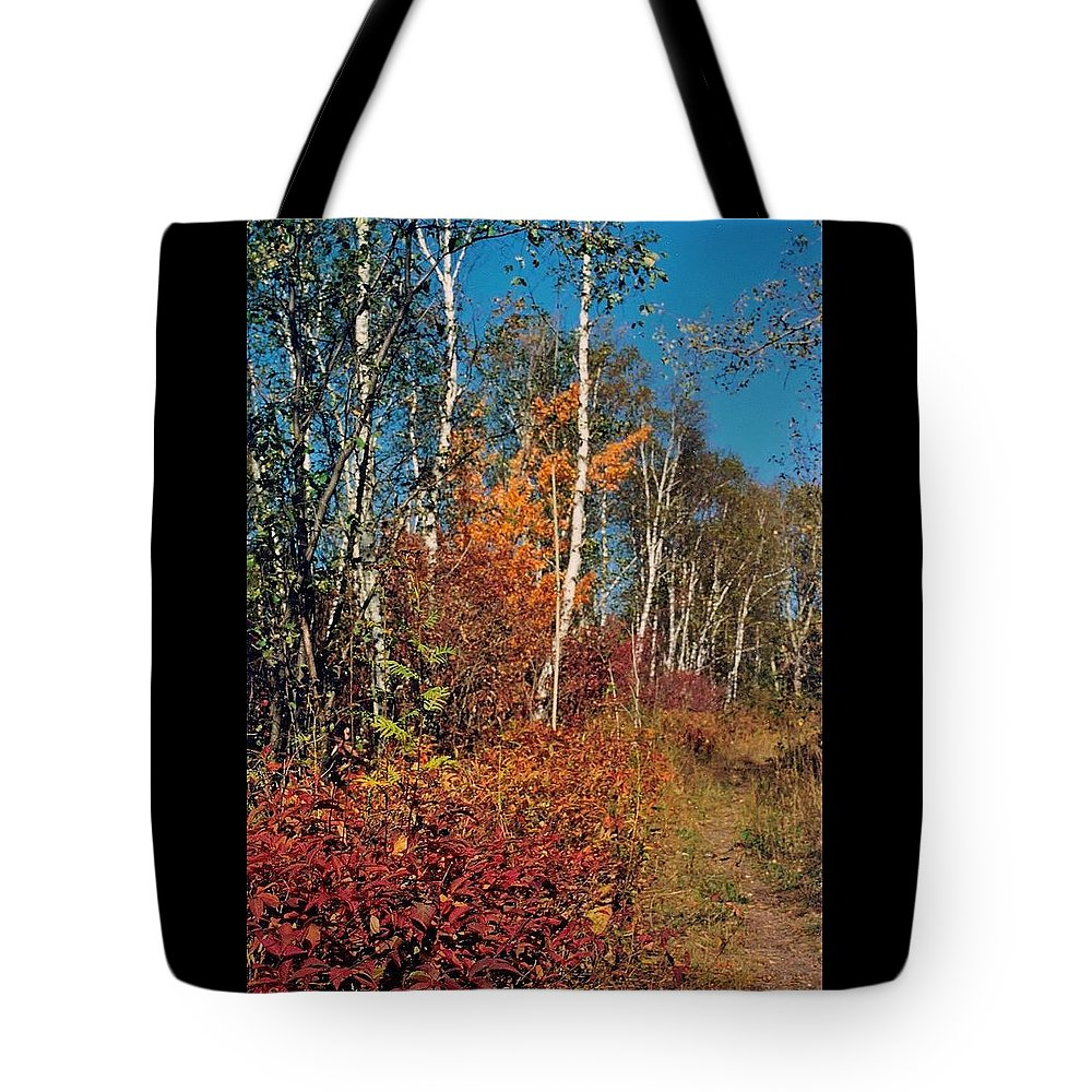 Autumn Tote Bag featuring the photograph Minnesota Autumn Path by Rory Cubel