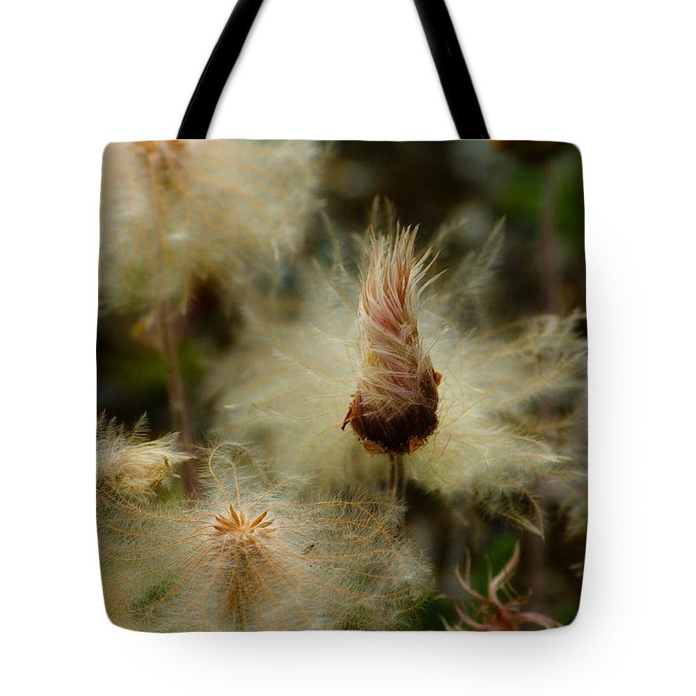 Blowball Tote Bag featuring the photograph Miracle Flower by Max Steinwald