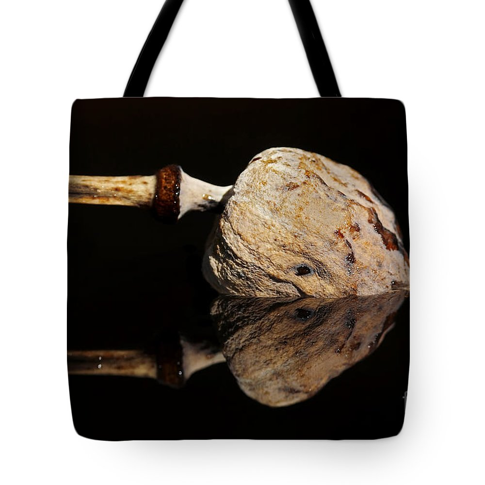 Anacampsis Tote Bag featuring the photograph Mirroring by Michal Boubin