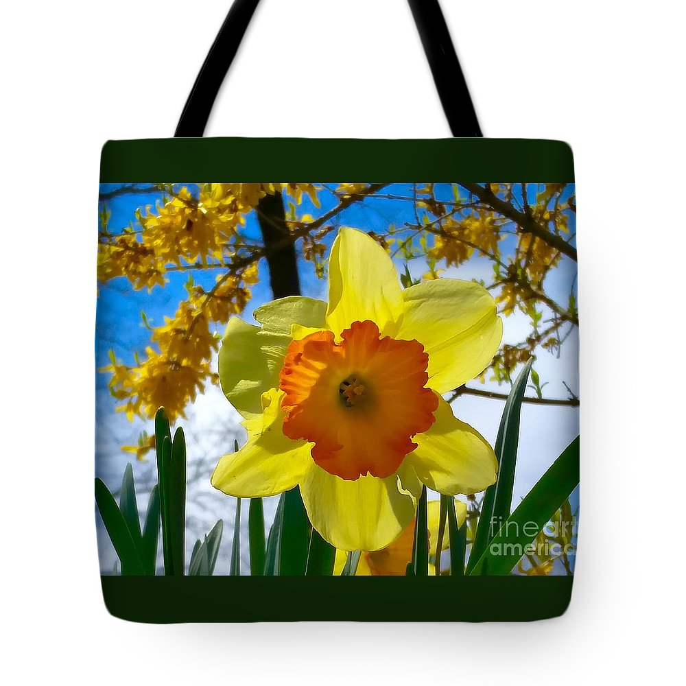 Daffodils Tote Bag featuring the photograph Miss D Encore by Mioara Andritoiu