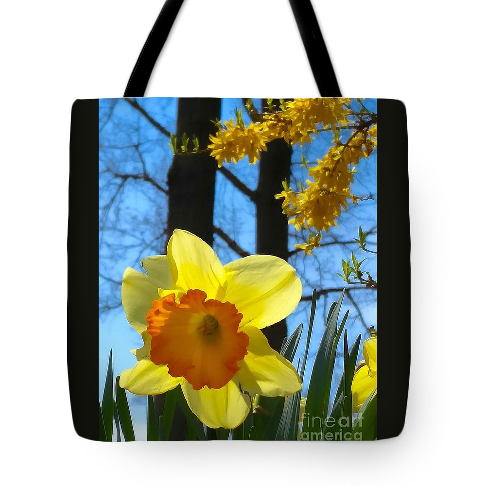 Daffodils Tote Bag featuring the photograph Miss D by Mioara Andritoiu