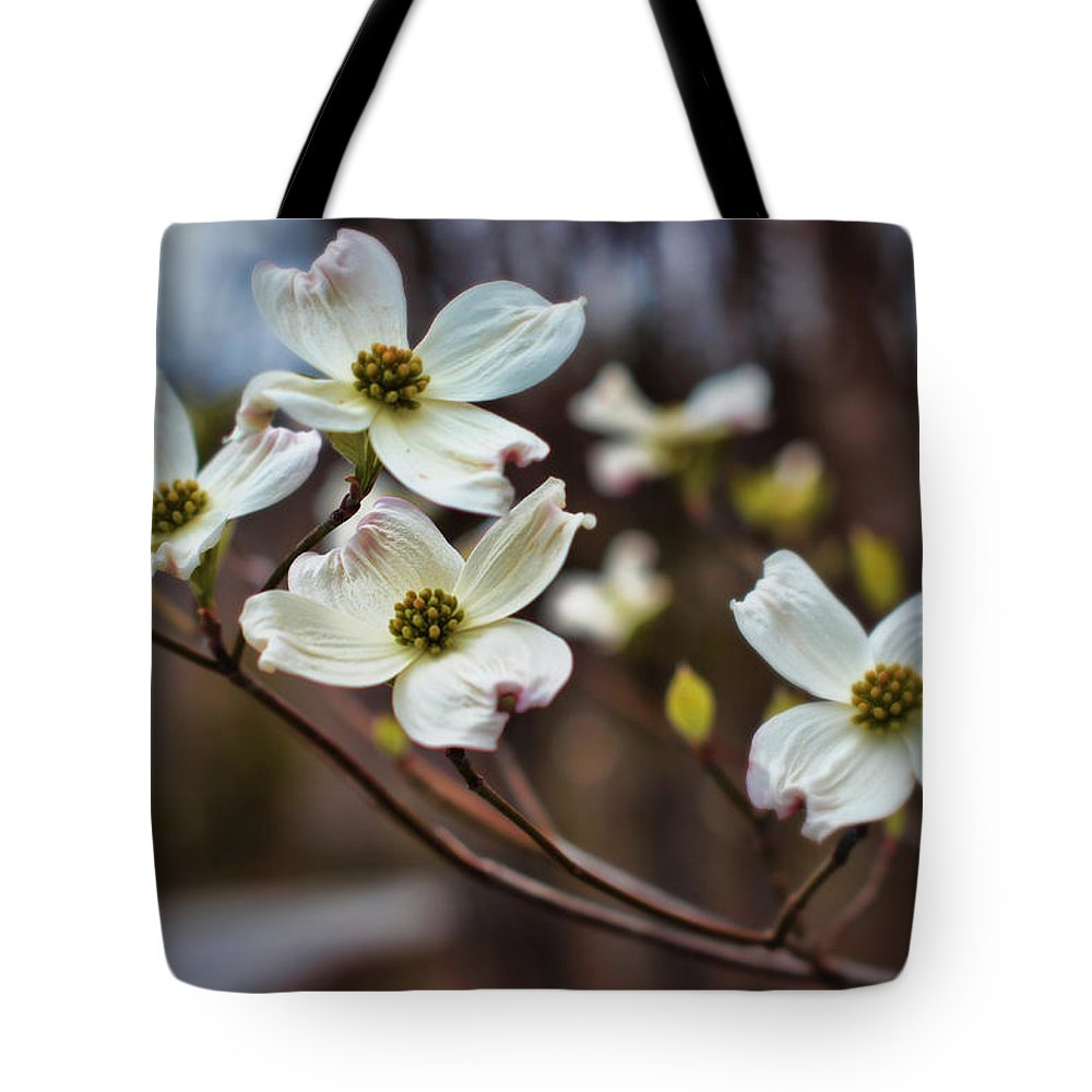 Dogwood Tote Bag featuring the photograph Missouri Dogwoods by Cricket Hackmann