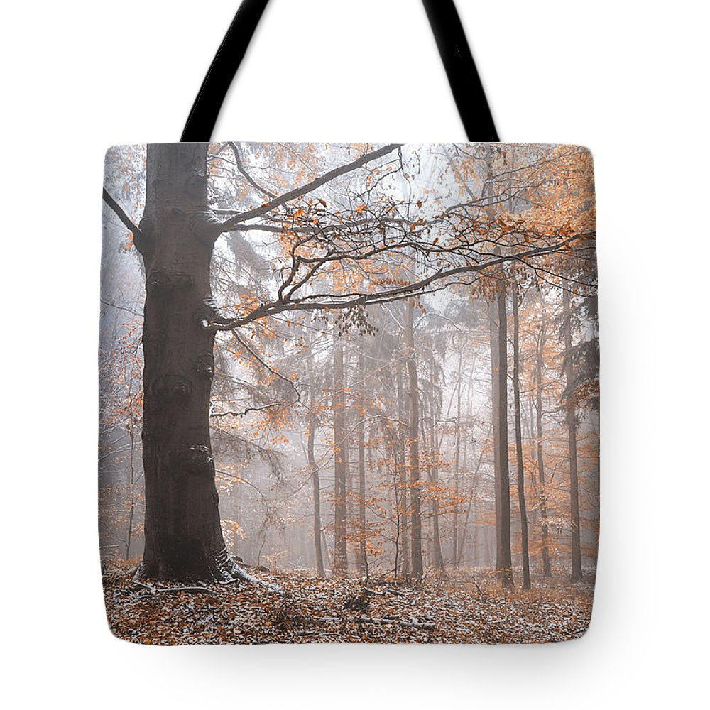 Jenny Rainbow Fine Art Photography Tote Bag featuring the photograph Misty Forest by Jenny Rainbow