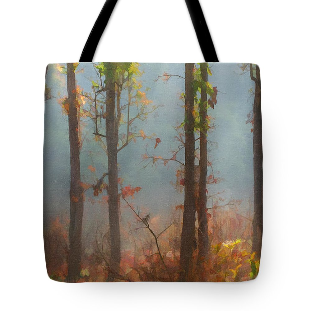 Morning Tote Bag featuring the digital art Misty Indian Morning by Liz Leyden