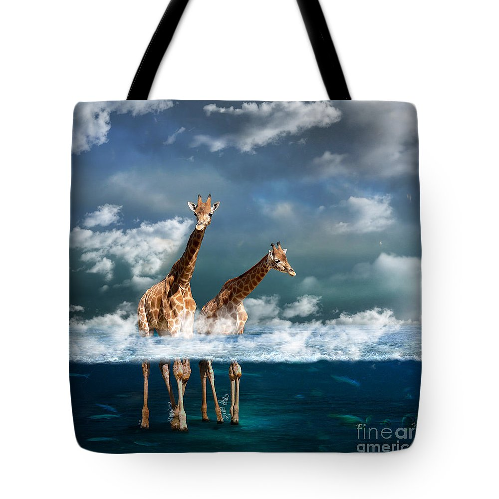Sea Tote Bag featuring the photograph Misty by Martine Roch