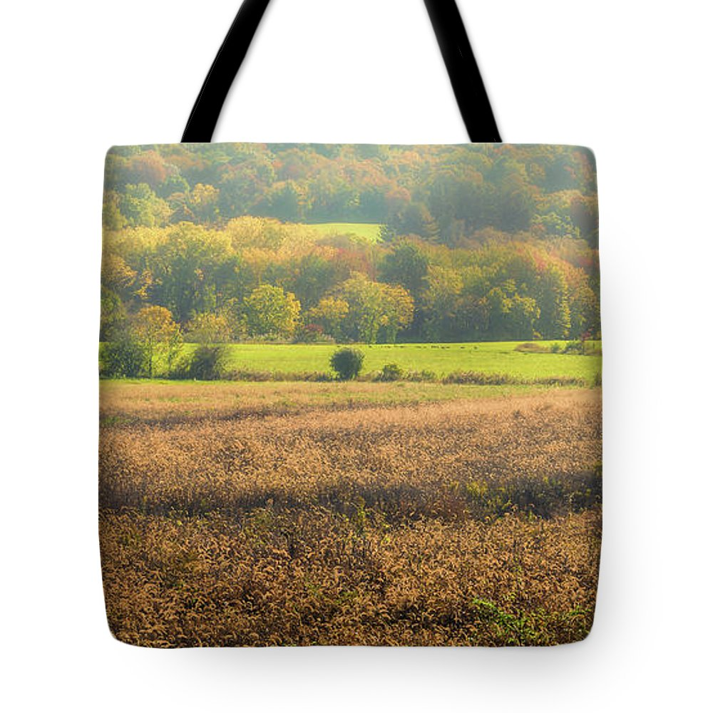 Landscape Tote Bag featuring the photograph Misty Morning by Heather Hubbard