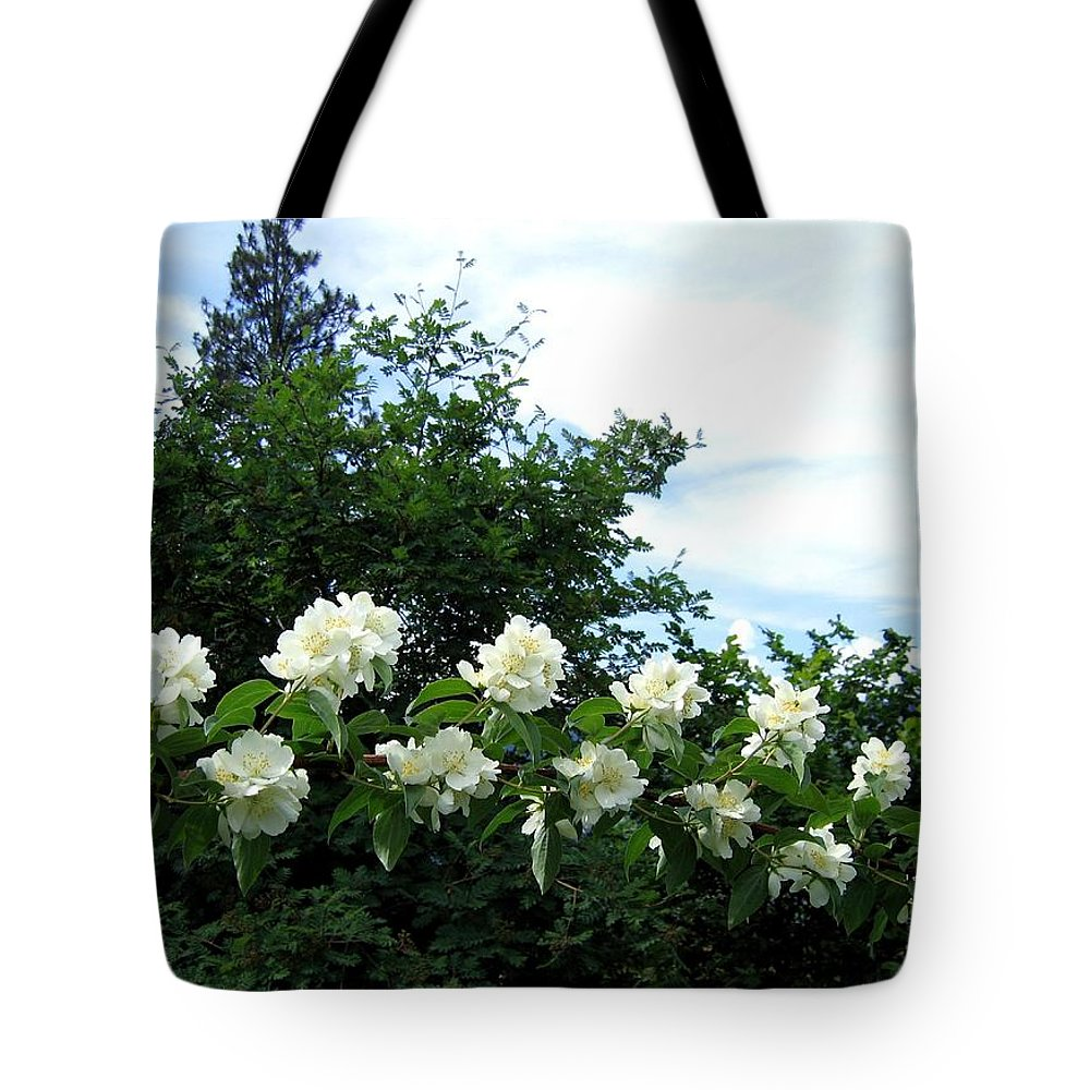 Mock Orange Tote Bag featuring the photograph Mock Orange Blossoms by Will Borden