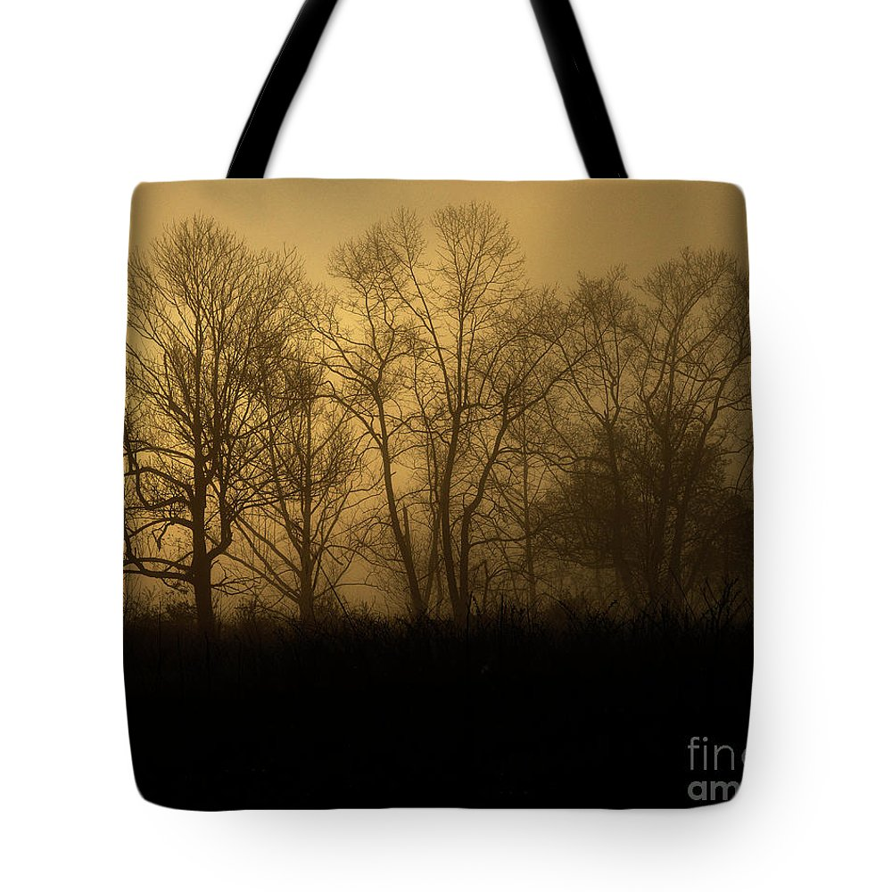 Nature Tote Bag featuring the photograph Morning Fog, #2, Smoky Mountains, Tennessee by Stanton Tubb