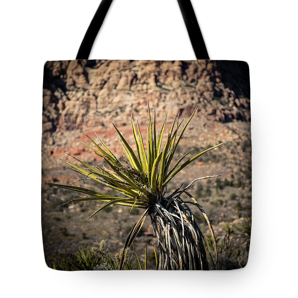 Cactus Tote Bag featuring the photograph Mojave Yucca by Rockland Filmworks