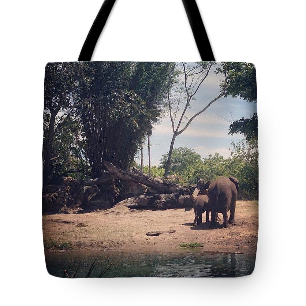 Elephants Tote Bag featuring the photograph Mom And Baby by Kendall Tabor