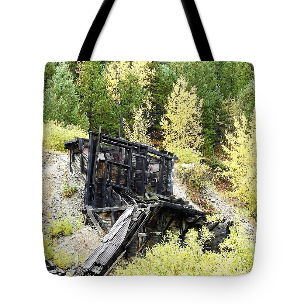 Colorado Tote Bag featuring the photograph Moment In Time by Nicole Belvill