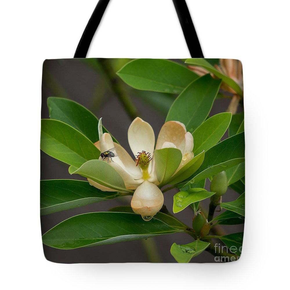 Tote Bag featuring the photograph Moments On The Magnolia by Amy S Klein