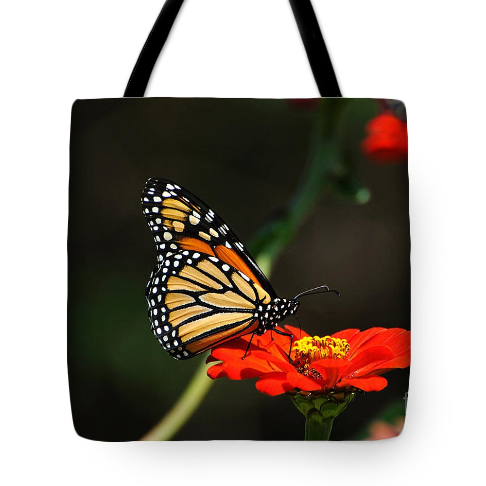 Monarch Butterfly Tote Bag featuring the photograph Monarch 6 by Edward Sobuta