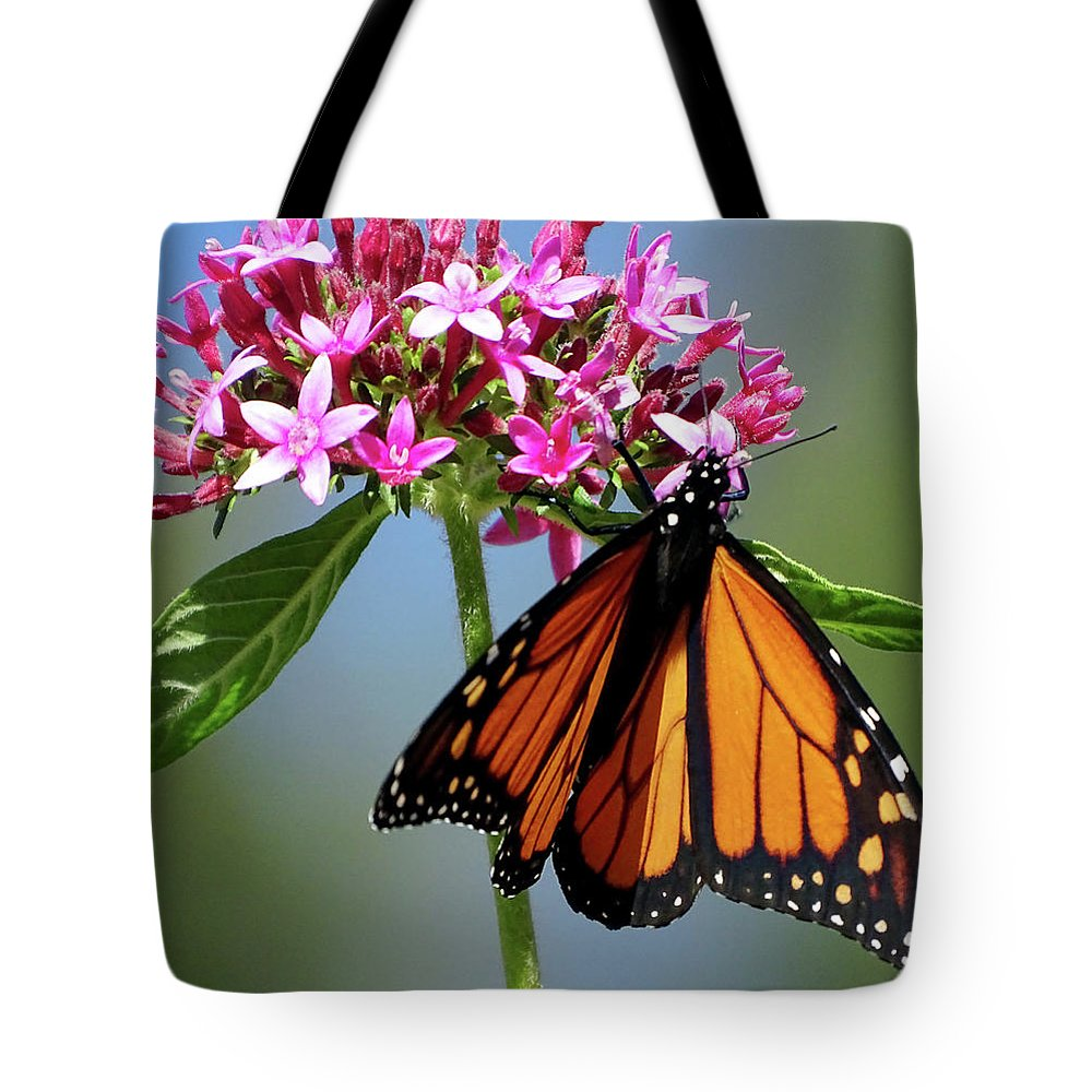 Butterfly Tote Bag featuring the photograph Monarch Beauty by Deborah England