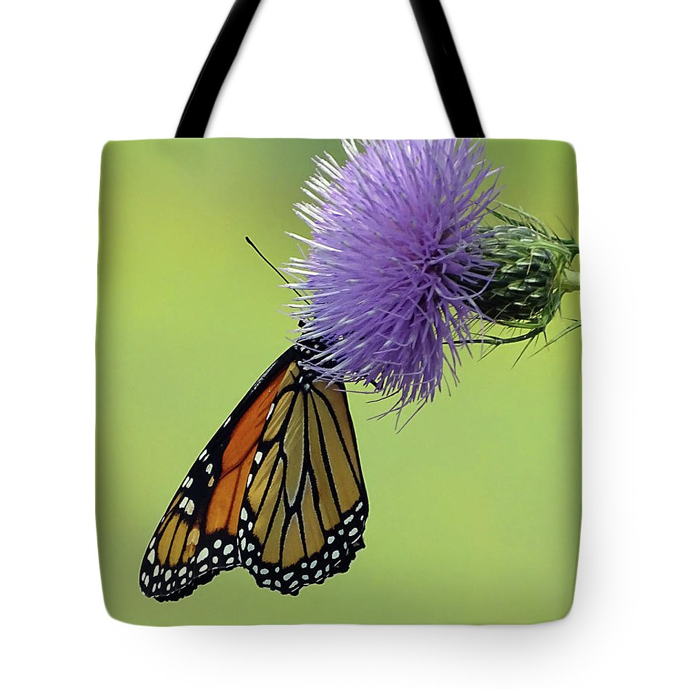 Butterfly Tote Bag featuring the photograph Monarch by Deborah England