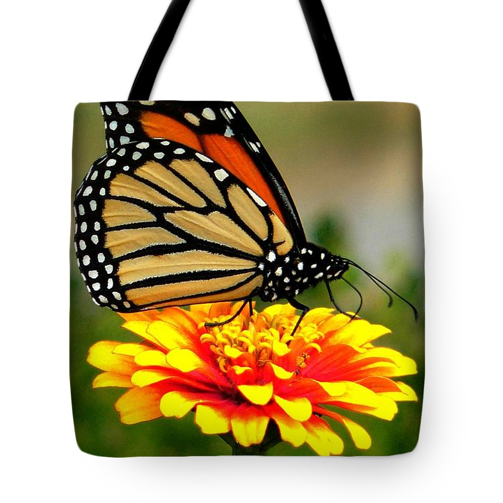 Butterly.flower Tote Bag featuring the photograph Monarch by Jeff Breiman