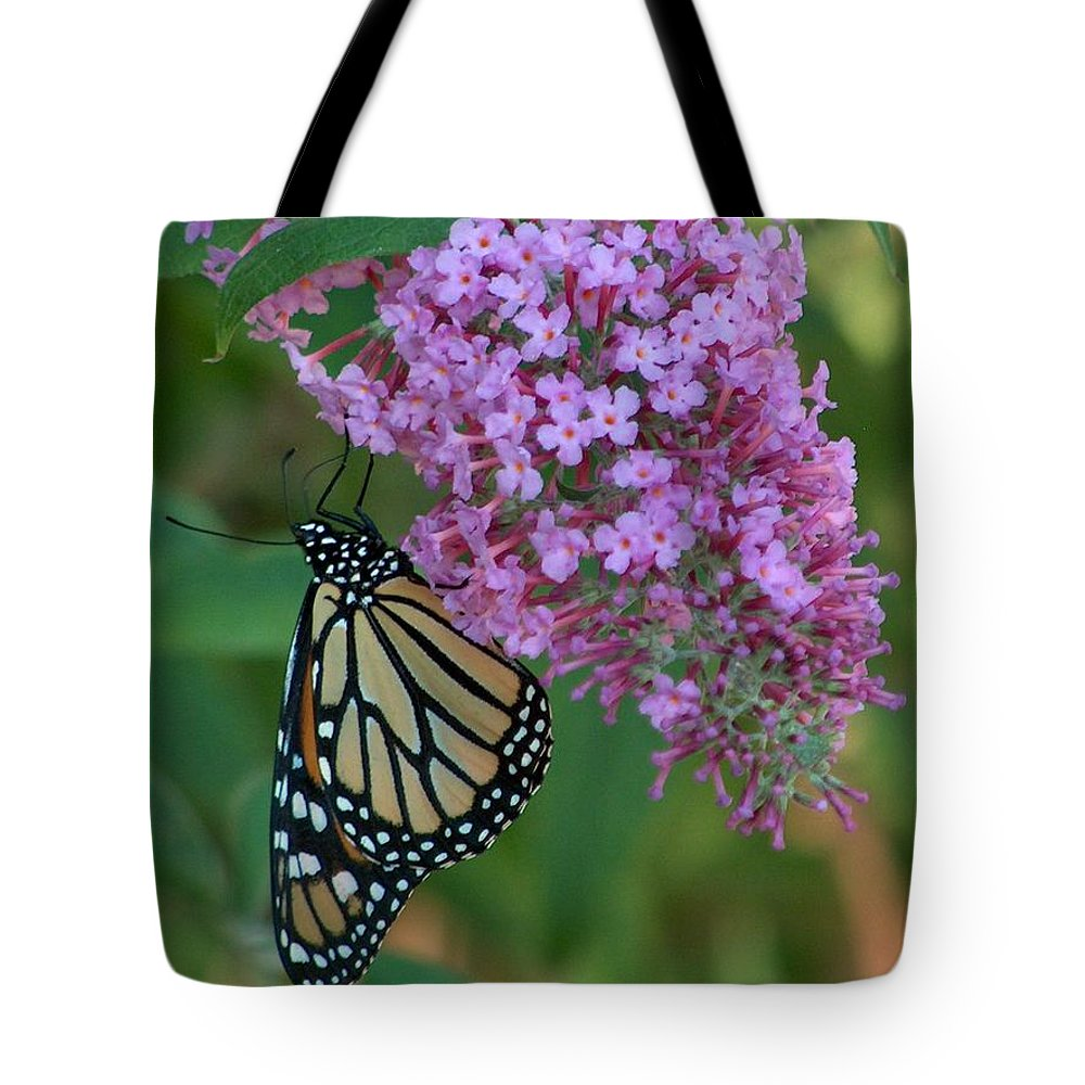 Monarch Tote Bag featuring the photograph Monarch On Butterfly Bush by Denise  Hoff