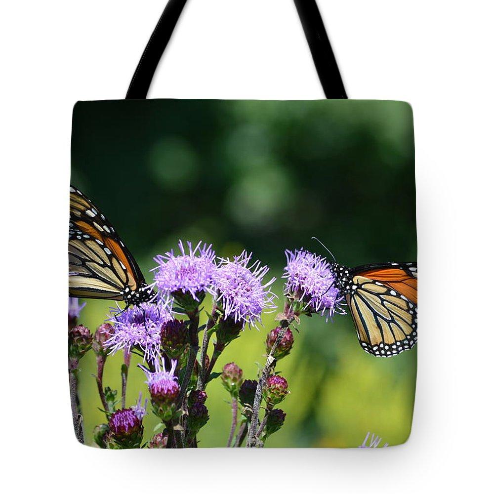 Monarchs Tote Bag featuring the photograph Monarchs And Blazing Star by Kurt Duerksen