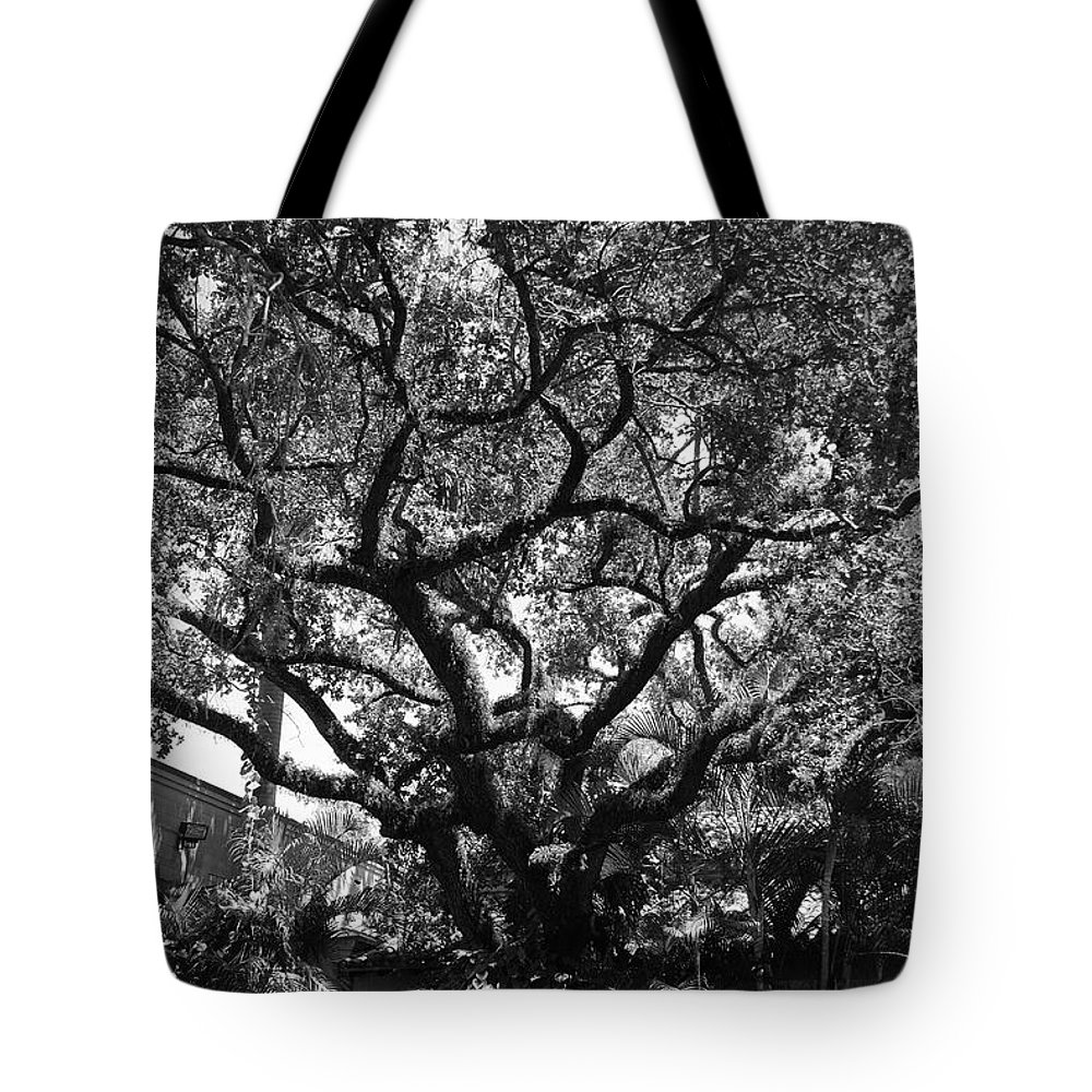 Black And White Tote Bag featuring the photograph Monastery Tree by Rob Hans
