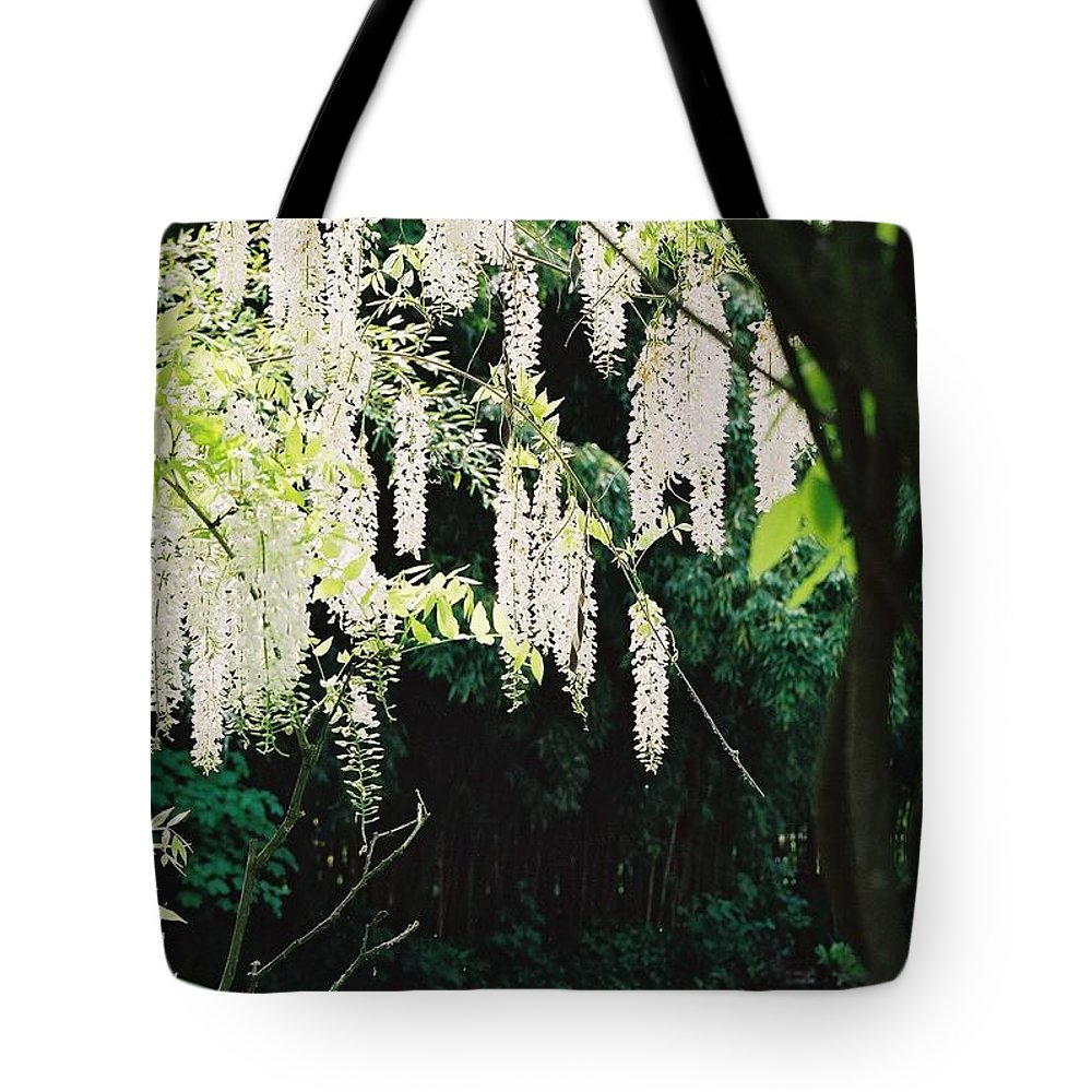 Monet Tote Bag featuring the photograph Monet's Garden Delights by Nadine Rippelmeyer