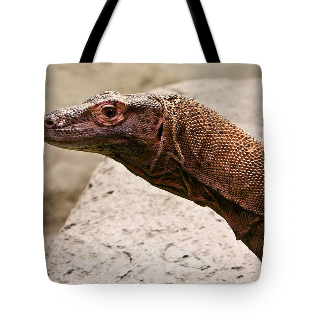 Monitor Tote Bag featuring the photograph Monitor Lizard by Douglas Barnett