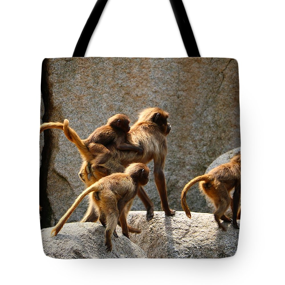 Animal Tote Bag featuring the photograph Monkey Family by Dennis Maier
