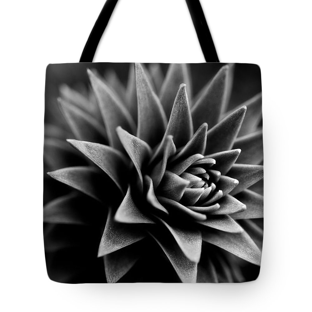 Monkey Puzzle Tree Tote Bag featuring the photograph Monkey Puzzle by Venetta Archer