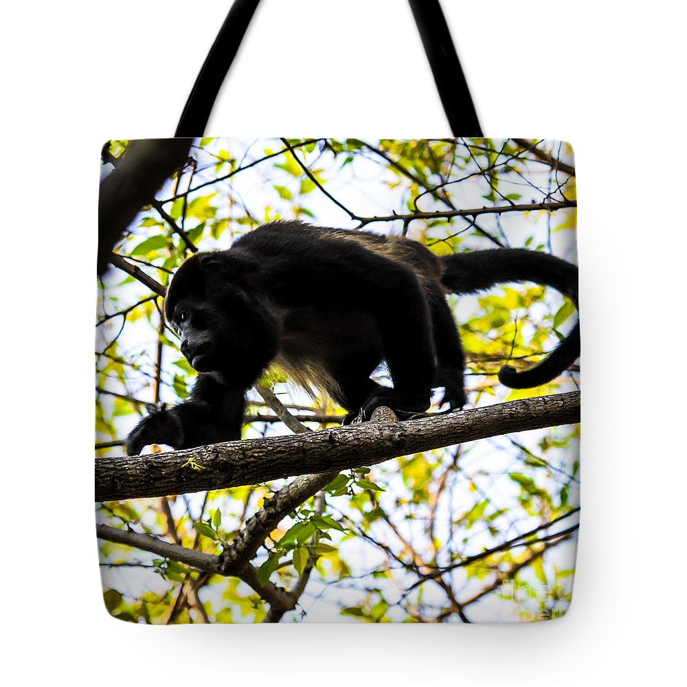 Black-face Monkey Tote Bag featuring the photograph Monkey2 by Olga Photography