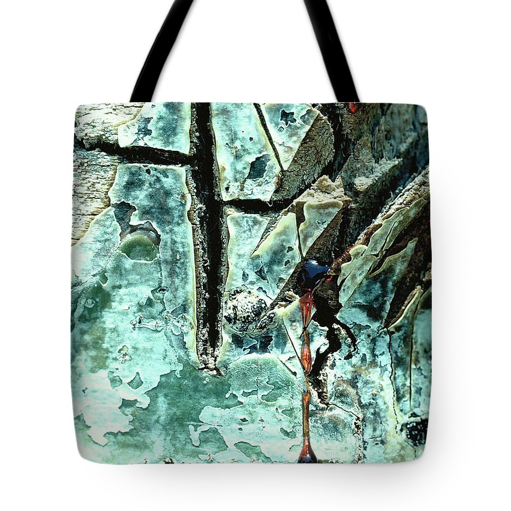 Trees Tote Bag featuring the photograph Mono Birch Bark by Norman Andrus