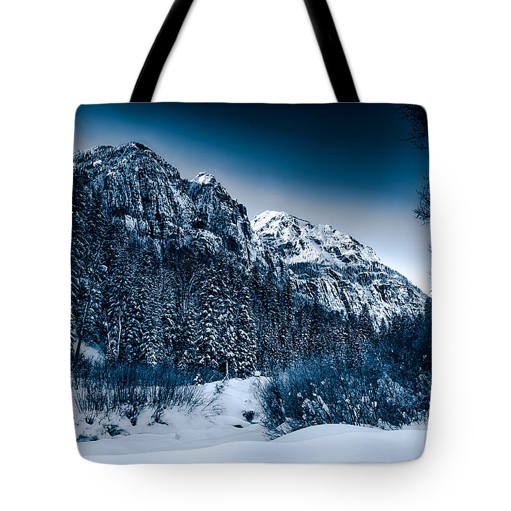 Angel Creek Tote Bag featuring the photograph Monochrome Morning by Barbara Hayton