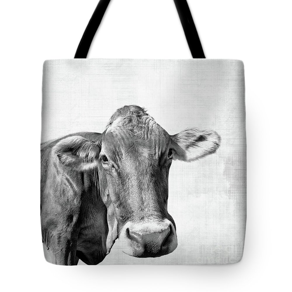 Cow Tote Bag featuring the photograph Moo by Delphimages Photo Creations