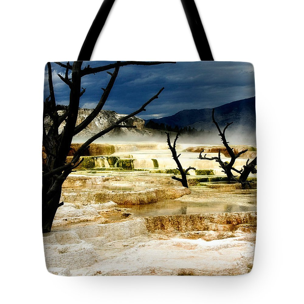 Algae Mats Tote Bag featuring the photograph Moody Minerva by Lana Trussell
