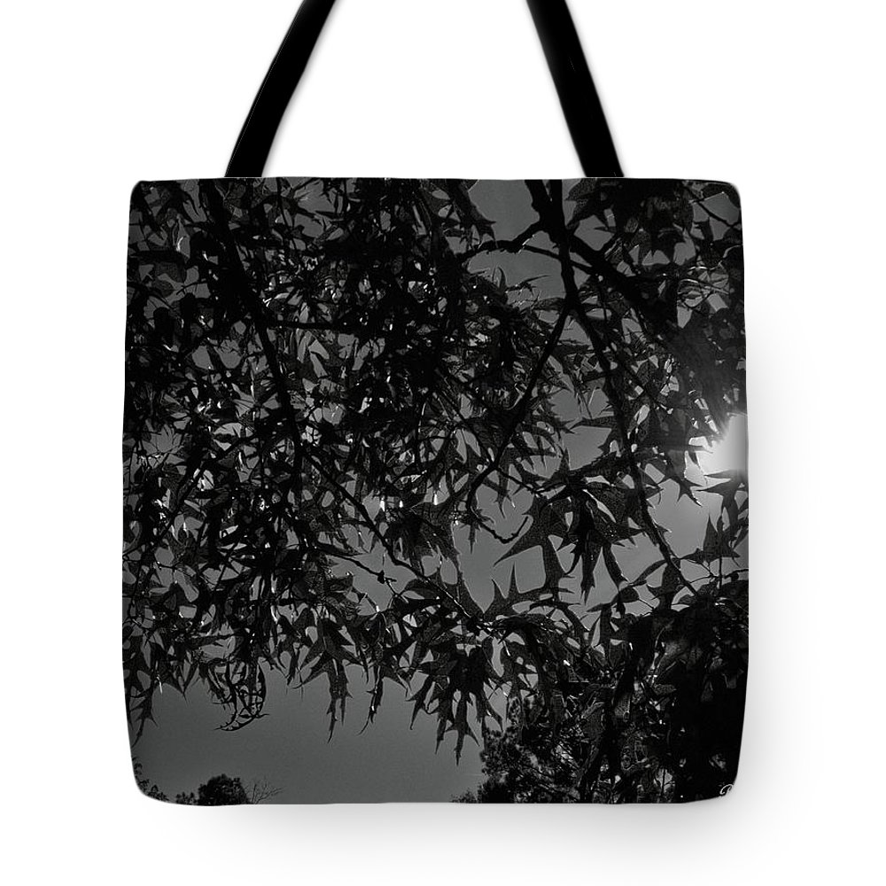 Moon Tote Bag featuring the photograph Moonlight by Betty Northcutt