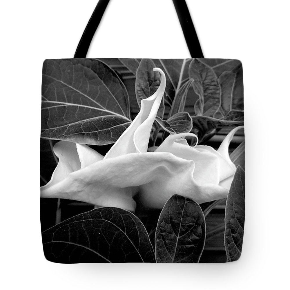 Flower Tote Bag featuring the photograph Moonlight/moonflower by Sylvia Freeman