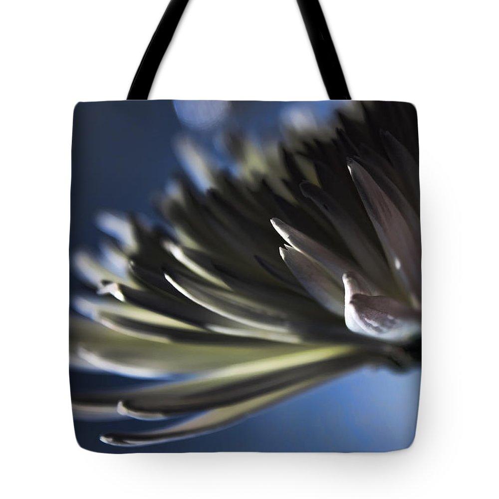 Macro Tote Bag featuring the photograph Moonlit by Lauren Radke