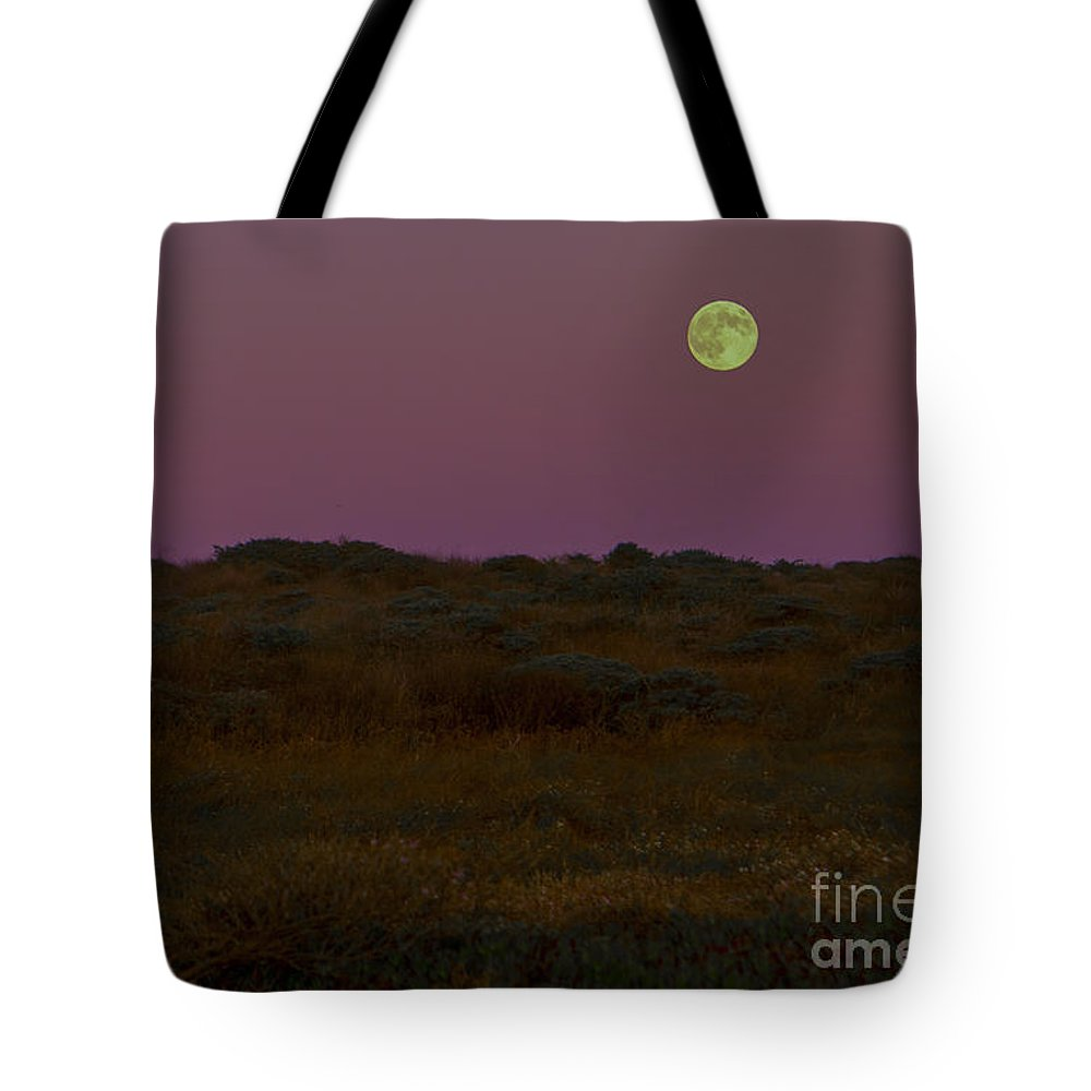 Moon Tote Bag featuring the photograph Moonrise In Bodega Bay by Diane Diederich