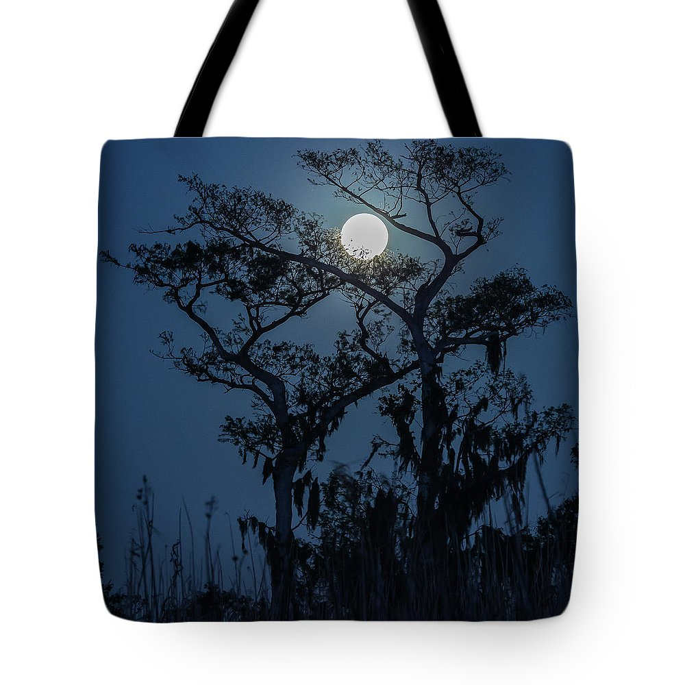 Florida Tote Bag featuring the photograph Moonrise Over Wetlands by Stefan Mazzola