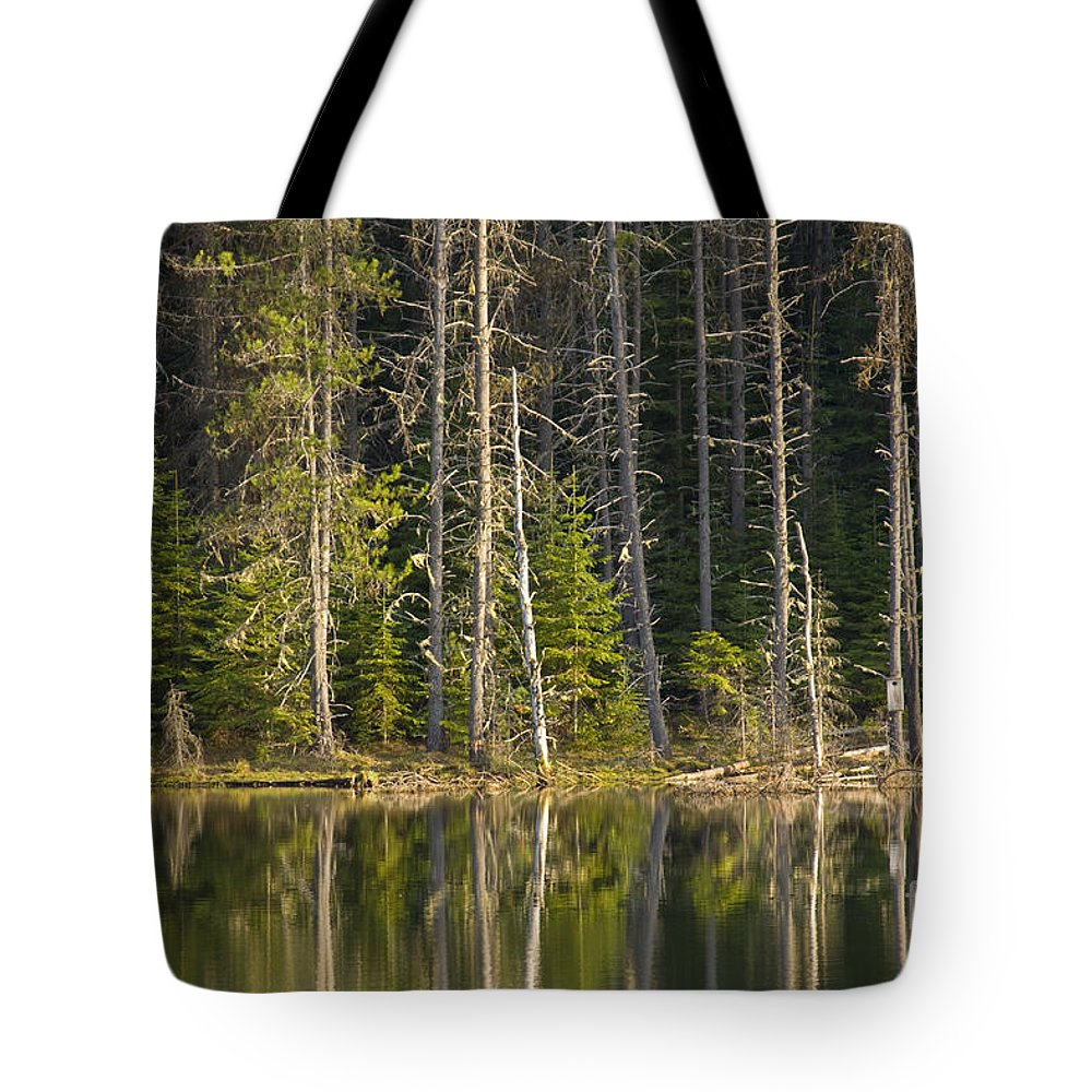 Trees Tote Bag featuring the photograph Moose Creek Reservoir by Idaho Scenic Images Linda Lantzy
